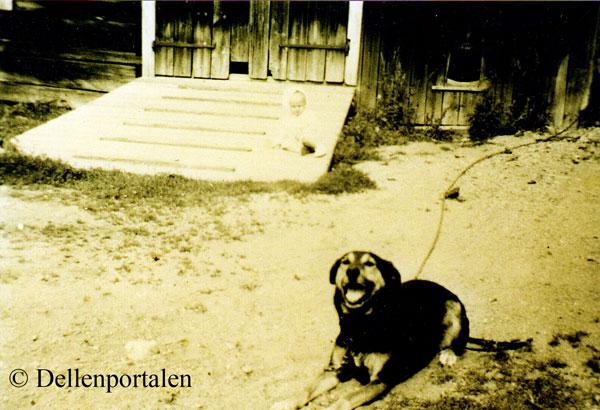 ang-035-bunden-hund