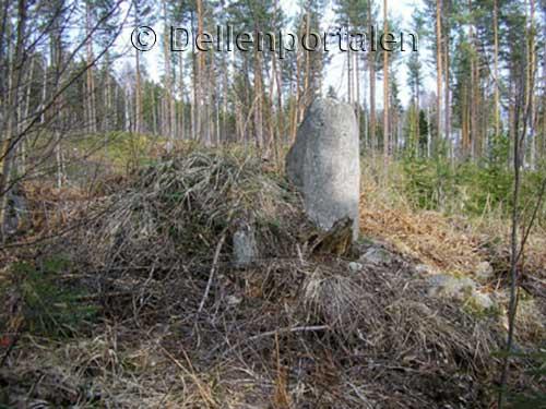 bjns-001-granssten-skalsvedja