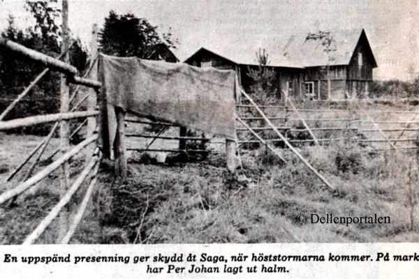 sla-030-vindskydd