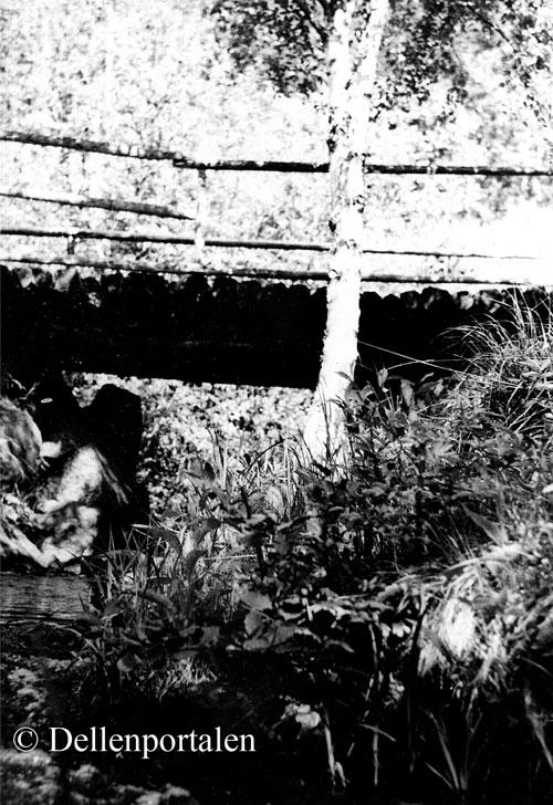 tvs-041-netzells-bron