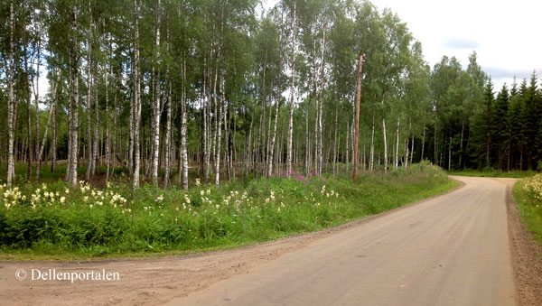 nov-098-hallbo-park
