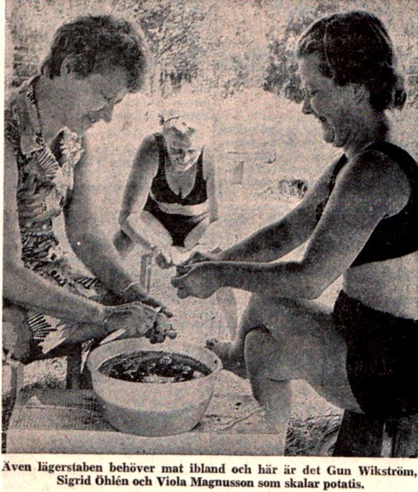 roj-031-1973