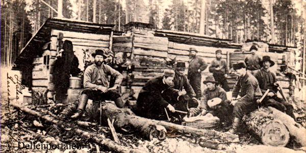 skog-001-koja