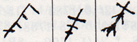 boh-018-g-ter-1