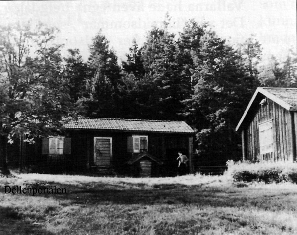 fv-010-50