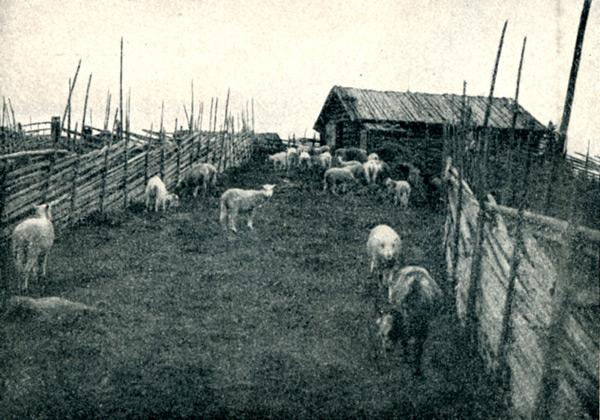 fv-025-digerk--1923