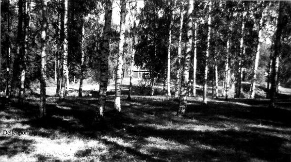 fv-044-106