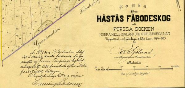 fv-063-hastas-