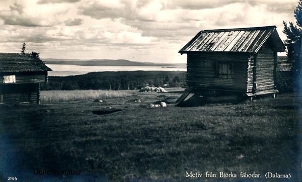 vb-084-bjorka