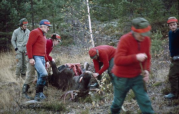 jakt-006-1980- tommy-l