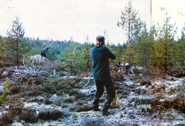 jakt-022-tidning