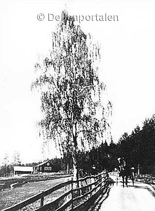 an-008-landsvag