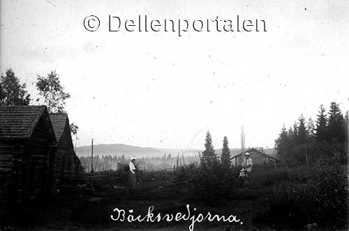 gpbj-007-backsvedjorna