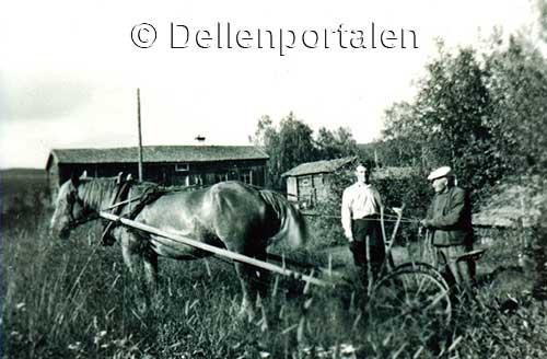 nl-029-slatter