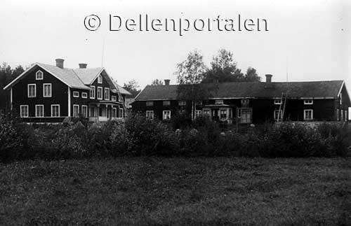 nl-031-svedars