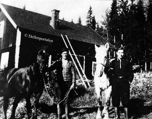 ska-112-hestar