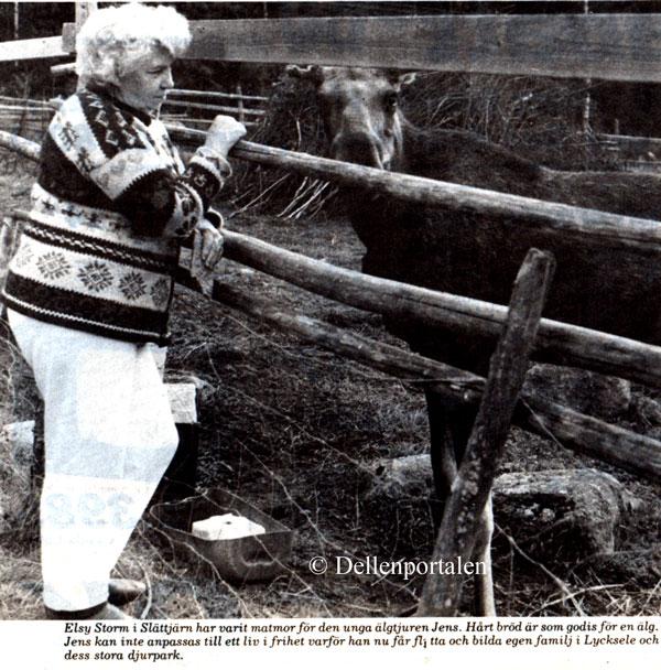 sla-034-sista-bild-1989