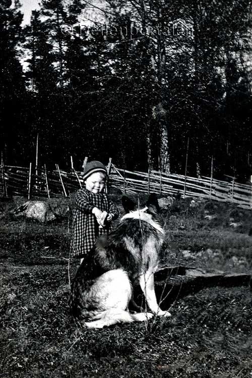 ytt-016-flicka-hund