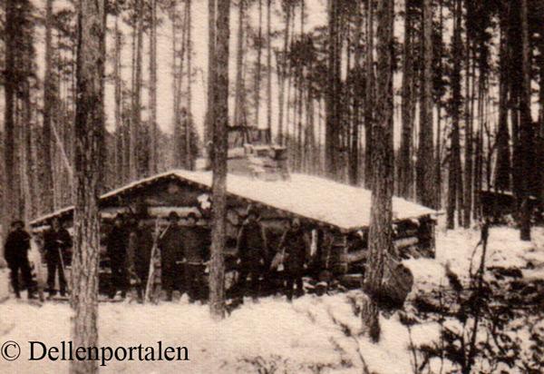 skog-009-koja