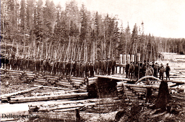 skog-025-1897