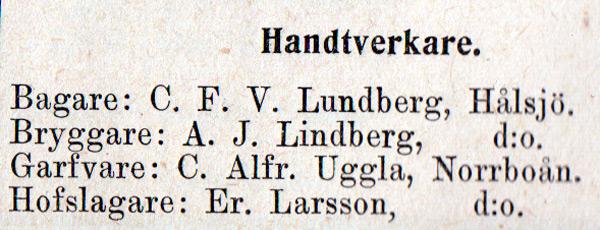 hin-040-annons-1902