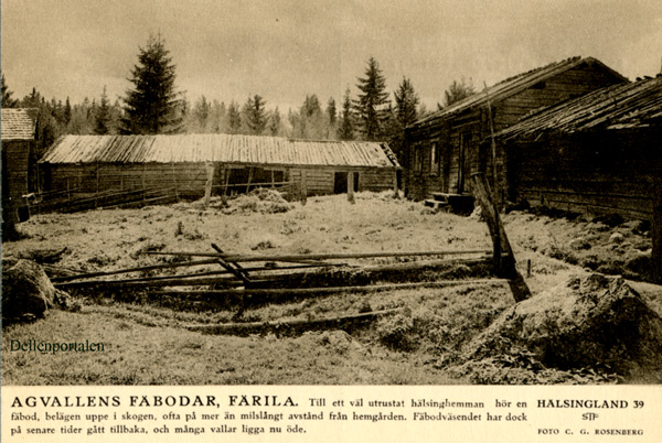 fv-013-agvall