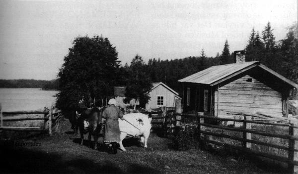 fv-016-55