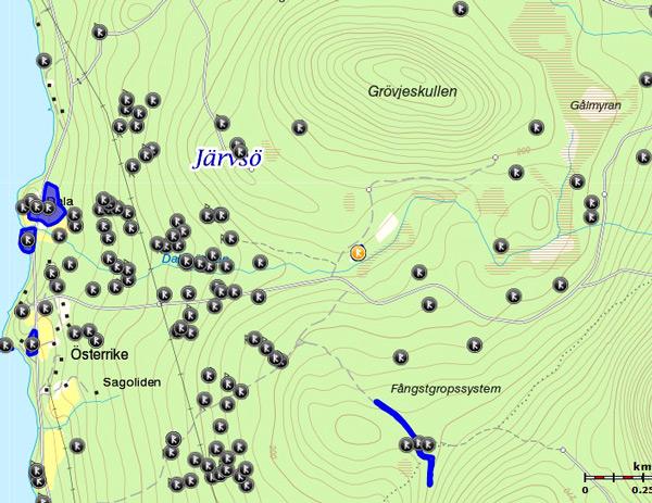 jv-010-ned-grovje