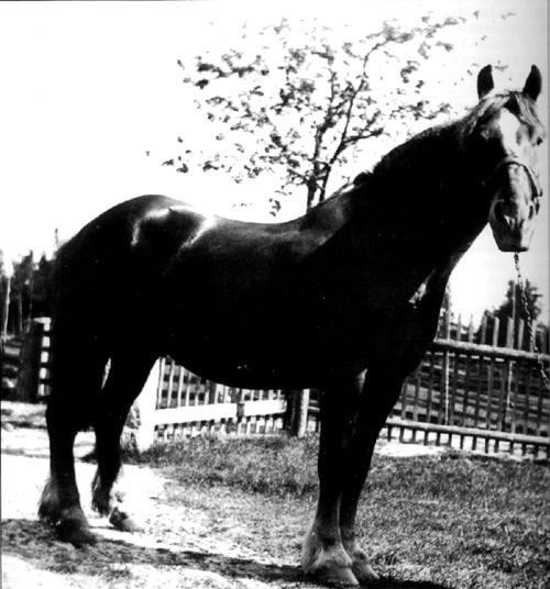 dv-109-120
