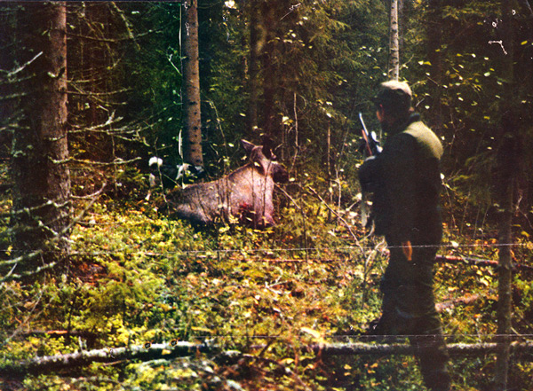 jakt-021-bror-