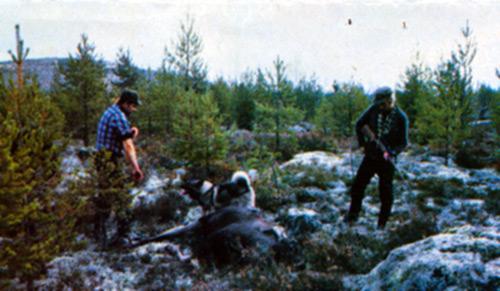 jakt-023-tidning-