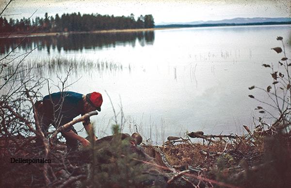 jakt-037-1980-moviken