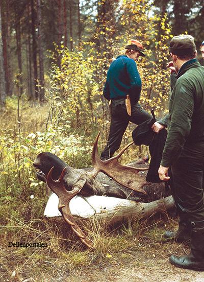 jakt-038-1982-