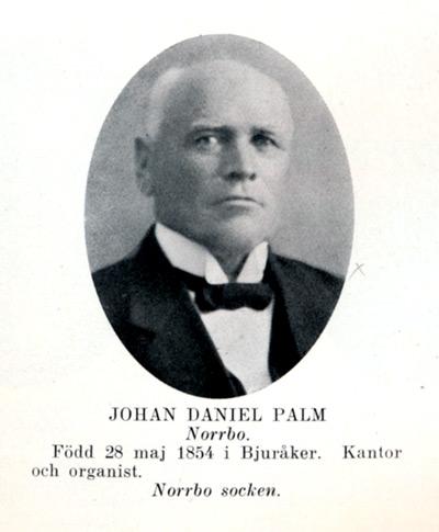 ky-025-palm